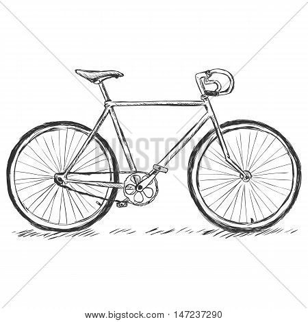 vector sketch illustration - bicycle on white background
