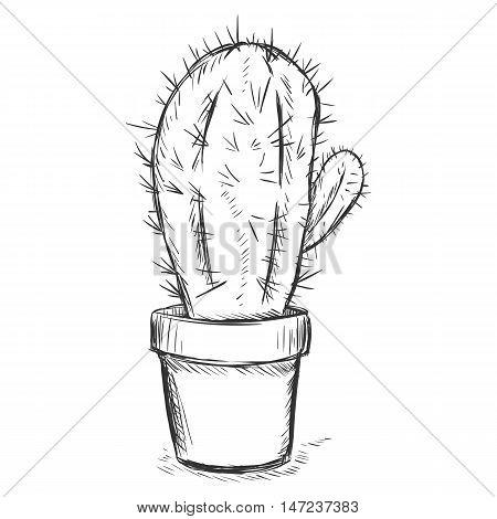 Vector Sketch Illustration - Cactus In A Pot