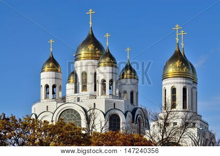 Golden domes of Cathedral of Christ the Savior. Kaliningrad, formerly Koenigsberg, Russia