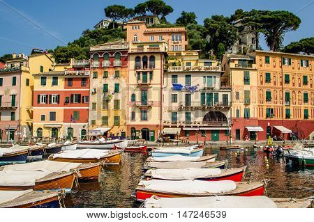 One summer day in the old port of Portofino