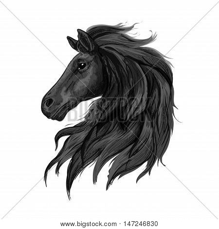 Black noble horse profile portrait. Raven stallion with long heavy wavy mane and thoughtful shiny eyes