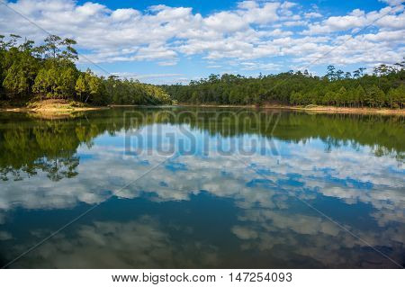 quite lake reflection, sky cloud reflection,forest reflection,