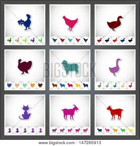 Livestock and Poultry. A set of flat stickers with shadow on white background. Vector illustration