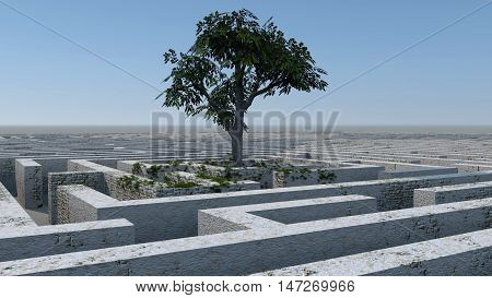 The tree image in a labyrinth 3D illustration