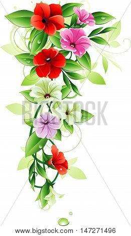 Decorative flowers. Red, white and pink petunia