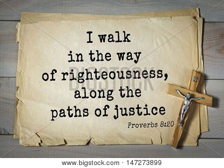 TOP- 150.  Bible Verses about Wisdom.I walk in the way of righteousness, along the paths of justice