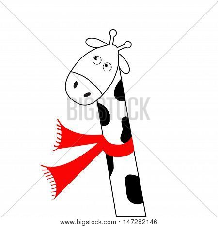 Cute cartoon black white giraffe wearing red scarf. Camelopard with long neck. Funny character. Happy animal. Flat design. Isolated. Vector