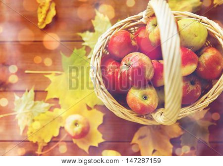 gardening, season, autumn and fruits concept - close up of wicker basket with ripe red apples and leaves on wooden table