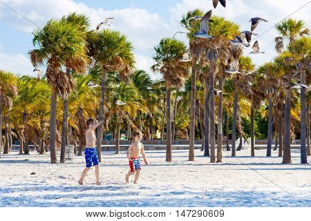 Two little kids boys having fun on tropical beach, happy best friends playing with birds, friendship concept. Siblings brothes in swim trousers. Key Biscayne, Miami, Florida.