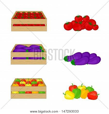 Vegetables in wooden boxes isolated on white background. Tomatoes, eggplant, bell peppers. Organic food illustration. Fresh vegetables from the farm.