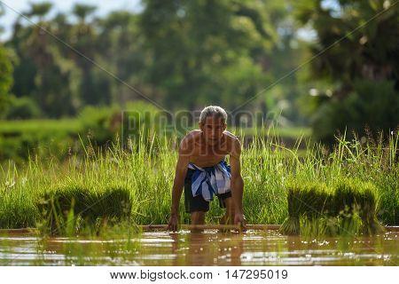 Old Farmer Working