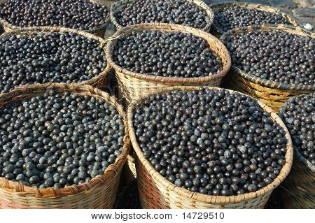 Acai Fruit Harvest And Market.