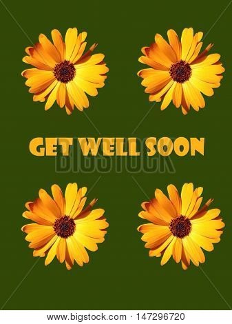 Abstract creative floral get well soon greeting card scene