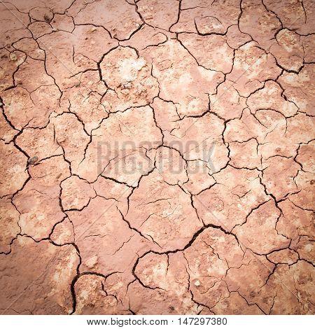 Cracks of the dried soil in arid season.