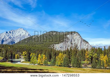 Mountain valley in Banff National Park. The sunny autumn day in the Canadian Rockies