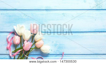 Spring white and pink spring tulips and pink ribbon on blue wooden background. Selective focus. Place for text. Toned image.