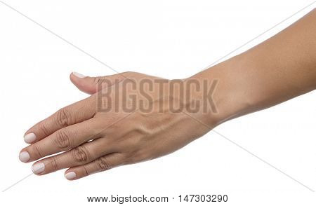 Caucasian female hand about to shake isolated on white background.