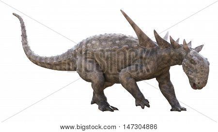 3D rendering of Sauropelta looking for food, isolated on white background.