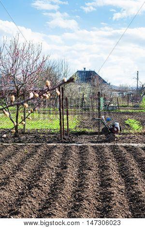 Plough Garden Ground And Tiller In Village