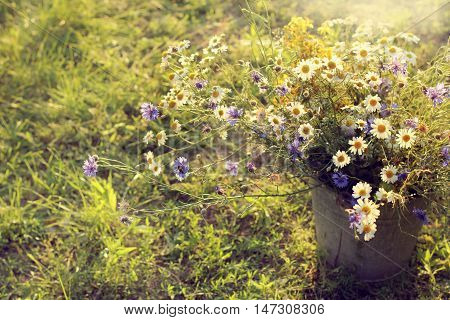 large bouquet of daisies and cornflowers standing in a bucket on the grass / summer field flowers