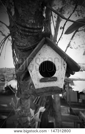 House Of Bird Hanging On The Tree.(house Of Animals)