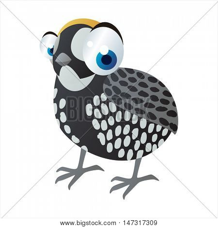 vector funny cartoon cute colorful animal image. Birds. Guinea fowl