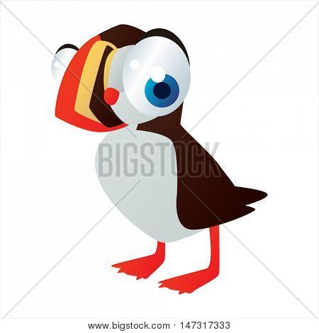 vector funny cartoon cute colorful animal image. Water birds. Puffin