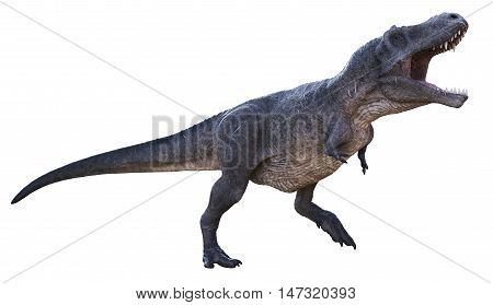 3D rendering of Tyrannosaurus Rex in an aggressive stance, isolated on white background.