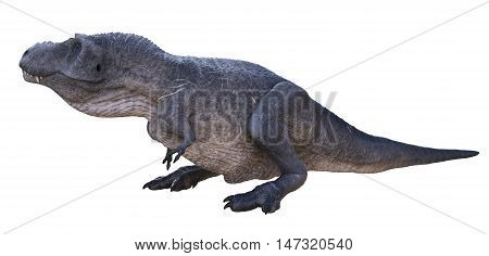 3D rendering of Tyrannosaurus Rex sitting, isolated on white background.