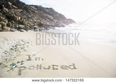 Im Polluted Beach