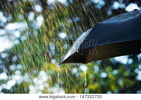Rain close up of umbrella in the rain with copy space