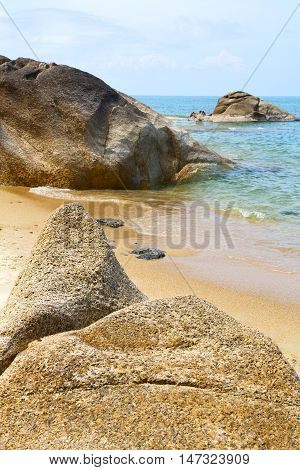 Kho    Beach  Tree  Rocks In Thailand     China Sea