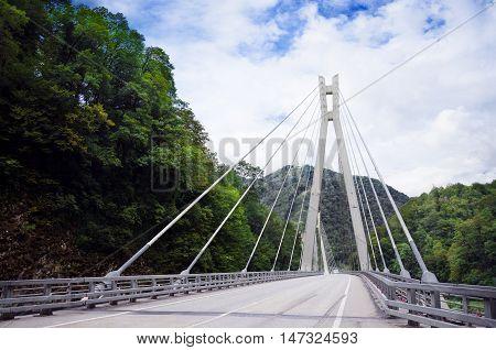 Cable-stayed bridge in Russia, Sochi. Photo landscape