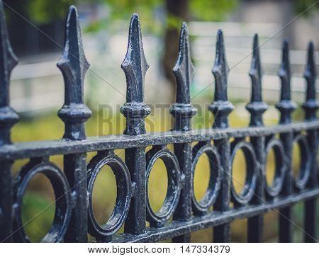 A detail of the wrought iron fence of the railing