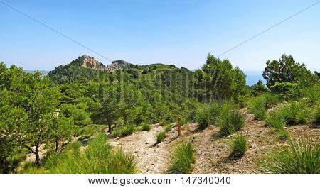 Hiking Path In The Mountains, Panorama