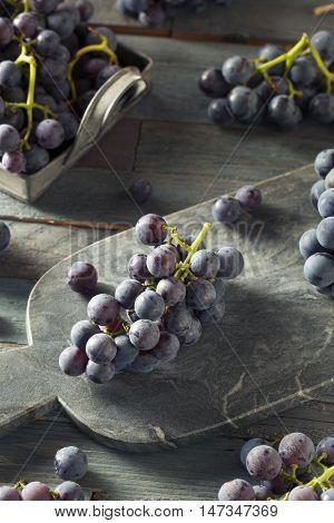 Raw Organic Purple Concord Grapes