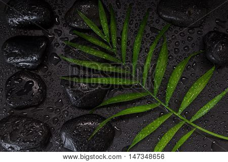 Wet Black Basalt Stones With Green Leaf, On Black Background With Water Droplets