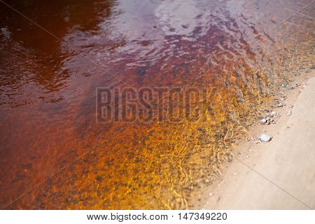 Sandy riverbank with clear river water coloured orange and yellow