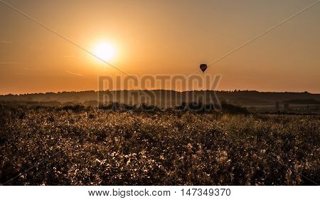 Hot air balloon flying during the sunset