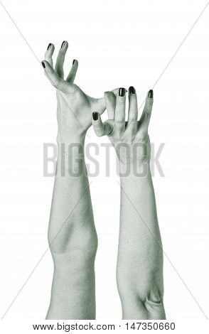 Zombie Woman Hands Reach Out Isolated