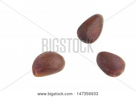 Pine nuts in shells on the white background.