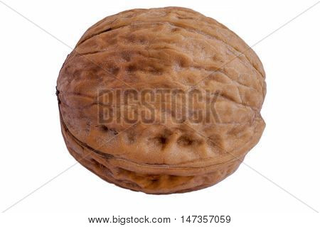 The walnuts isolated on the white background