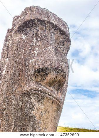 The Face Of The Moai