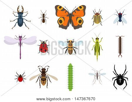 Insects and bugs, pests and midge set of icons from top view. Mosquito or gnat, bee or honeybee, caterpillar or worm, moth or butterfly, dragonfly and crest spider, grasshopper and wasp, ladybug and fly, stag beetle and ant, colorado beetle