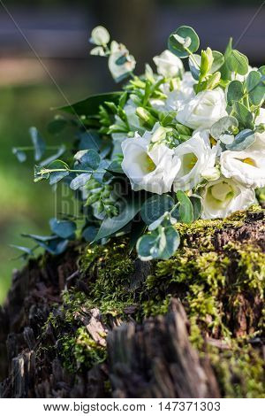 Wedding bouquet of white flowers on the wood stump