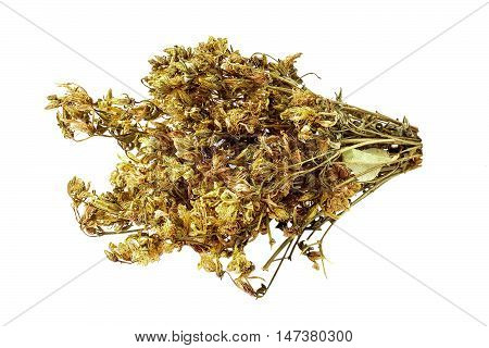 Bundle of dried flowers Saint-John's-wort (Hypericum) isolated on white background. It is used for the preparation of useful herbal tea and medicinal infusions in the herbal medicine