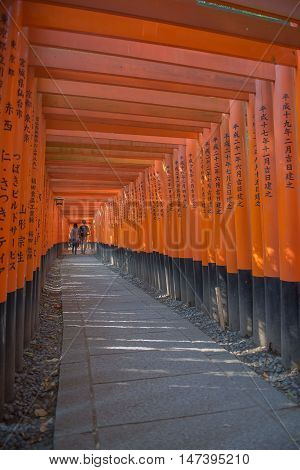 KYOTO, JAPAN - APRIL 30 , 2016 : Torii gates in Fushimi Inari Shrine, Kyoto, Japan. APRIL 30 2016. walkway in Torii gates.