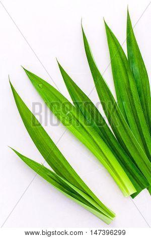 Thai Herbal Ingredpandan Leaves 's Herbal Ingredient For Dessert ,tea And Aromatherapy. Sweet And Ea