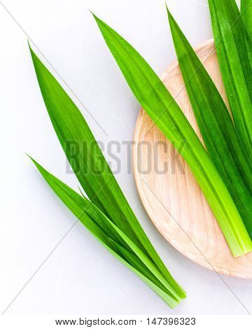Pandan Leaves 's Herbal Ingredient For Dessert ,tea And Aromatherapy. Sweet And Earthy Aroma .