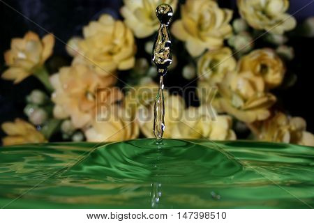 macrophotography freezing point of impact of a drop of water in a container with flowers background
